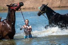 Orenburg Ryssland - 18 Juni 2016: Flickabadninghästar Royaltyfri Bild