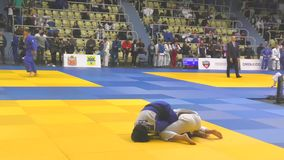 Orenburg Ryssland - 21 Oktober 2017: Flickor konkurrerar i judon stock video