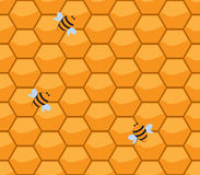 Orenge honneycomb with bee. Pattern of cute honeycomb seamless pattern, vector,Endless texture can be used for wallpaper, pattern fills, web page background Stock Photo