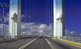 Orenoque bridge Royalty Free Stock Photography