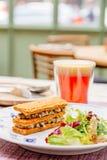 Oreorchis patens X-bekläda och mat i tidig eftermiddag Royaltyfri Bild