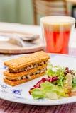Oreorchis patens X-bekläda och mat i tidig eftermiddag Royaltyfria Foton