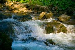 Orest sur la cascade de Canyanka Images stock
