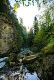 Orest sur la cascade de Canyanka Photo stock