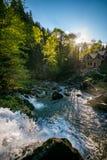Orest sur la cascade de Canyanka Photos stock
