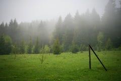 Orest sur la cascade de Canyanka Photographie stock