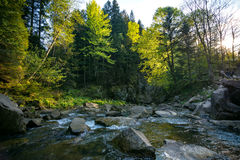 Orest sur la cascade de Canyanka Photographie stock libre de droits