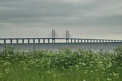 The Oresund bridge, view from Malmo. Royalty Free Stock Image