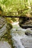 Orfento dal nära Caramanico Terme i Abruzzo & x28; Italy& x29; Arkivbilder