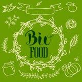 Orgánico, bio, sistema de elementos natural de los logotipos de la ecología Fotografía de archivo libre de regalías