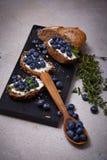 Orgânico suculento do mirtilo saudável saboroso do queijo creme do pão do alimento Imagem de Stock Royalty Free