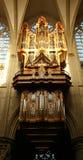 Orgaan in kathedraal van Brussel Stock Afbeelding