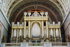 organ Royaltyfria Bilder