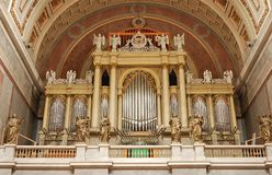 Organ. Stock Image