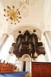 organ royaltyfri foto