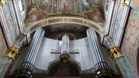 organ royaltyfri bild