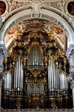 Organ stockfotos