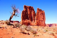 The Organ, Arches National Park Stock Photography