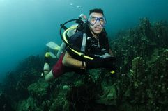 Organ coral and scuba diver. Male scuba diver swimming over coral reef Royalty Free Stock Images