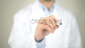 Organ Donor , Doctor writing on transparent screen Stock Photos