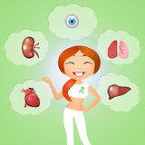 Organ donor. Illustration of organ donor for trasplant stock illustration