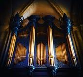 Organ royalty free stock image