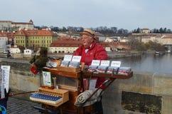 The organ grinder on Charles Bridge in Prague royalty free stock images