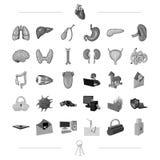 Organ, medicin, hälsa och annan rengöringsduksymbol i svart stil teknologi röveri, brottsymboler i uppsättningsamling royaltyfri illustrationer