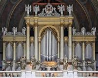 Organ Stock Photos