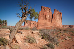 The Organ and Tower of Babel. At the Arches National Park - USA Stock Photo