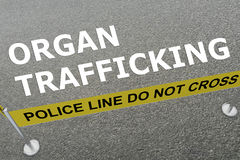 Organ Trafficking concept Stock Photography