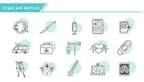 Organ und medizinischer Ikonensatz lizenzfreie abbildung
