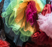 Organza Costume Skirts royalty free stock photo