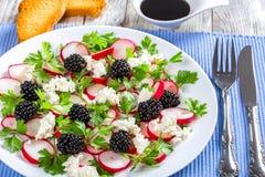organe de Bas-calories persil, de mûre, de radis et de fromage de chèvre photographie stock libre de droits