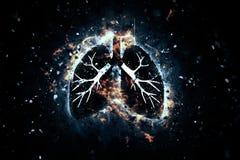 organes humains artistiques Photos libres de droits