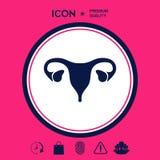 Organi umani Icona femminile dell'utero Immagine Stock