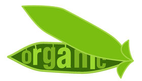 Organic 2 Stock Photography