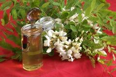 organic acacia honey in a small glass Royalty Free Stock Photo