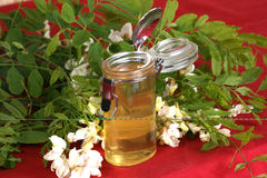 organic acacia honey in a small glass Royalty Free Stock Photos