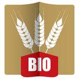 Organic agriculture Royalty Free Stock Photography