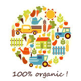 Organic agriculture vector background Royalty Free Stock Images