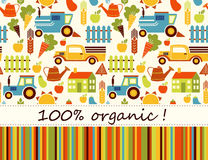 Organic agriculture vector seamless background Stock Images