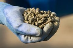Organic Alfalfa Pellets Stock Photos