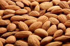 ORGANIC Almond background texture . Royalty Free Stock Photography