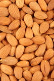 Organic almond or badam nuts Royalty Free Stock Photo