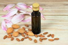 Organic almond oil in a bottle, almond kernels and nuts around royalty free stock photo