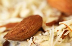 Organic almonds. Organic almond with grated ones Royalty Free Stock Photography