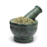 Organic Aniseed (Pimpinella anisum) on marble pestle. Isolated on white background royalty free stock photography