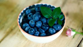 Bowl of fresh blueberries. Organic antioxidant rich blueberry in bowl conceptual healthy lifestyle and eating epicure food photography Royalty Free Stock Image