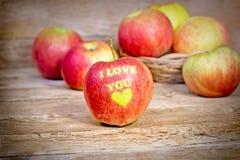 Organic apple Stock Photography
